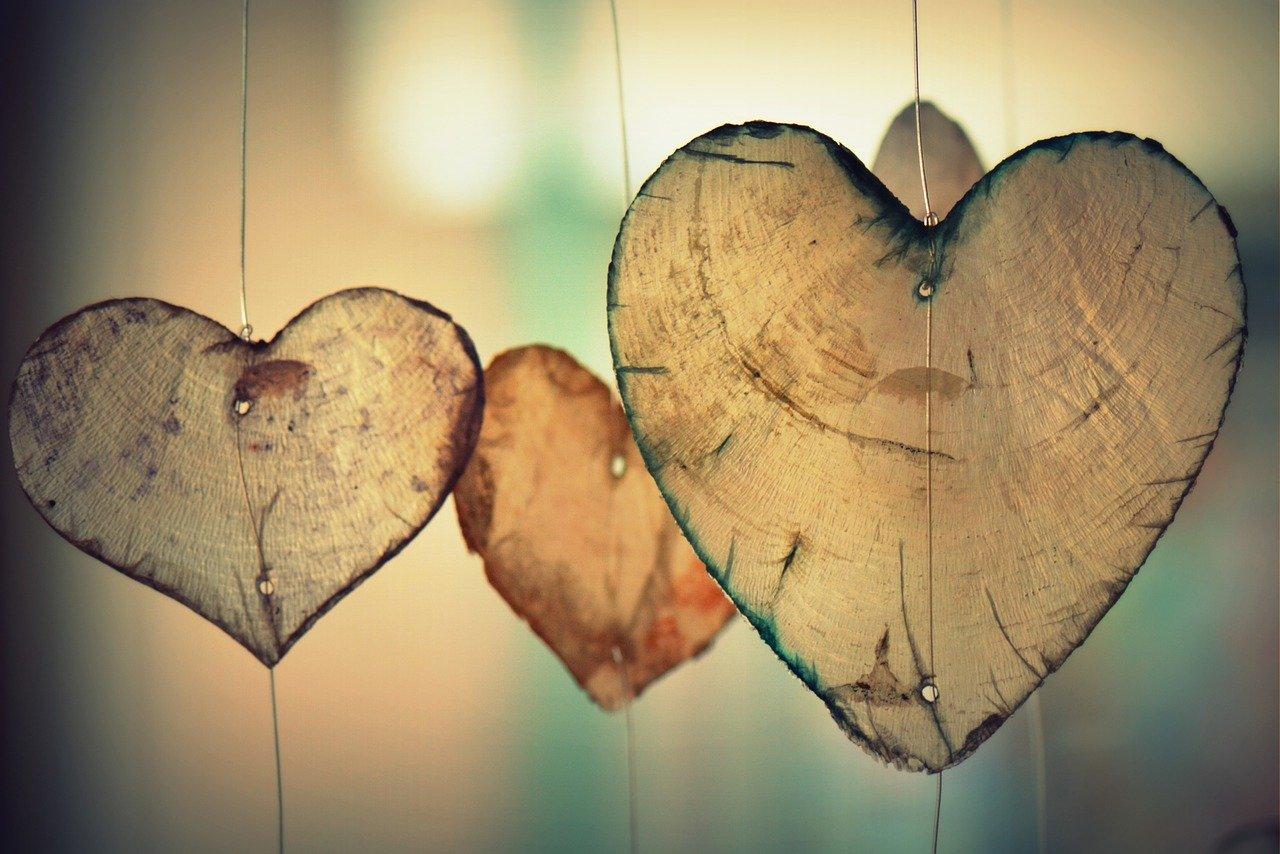 Artikelbild für den Erföffnungsartikel - Herzen
